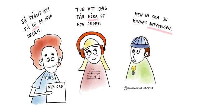 EN SEGLIVAD MYT OM LÄRSTILAR