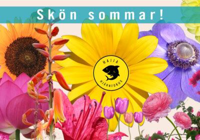 GLAD SOMMAR FRÅN OSS PÅ HAJJA HJÄRNFOKUS!